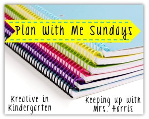 Plan with Me Sundays - Linky Party