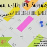 Plan with Me Sundays – Back to School Edition