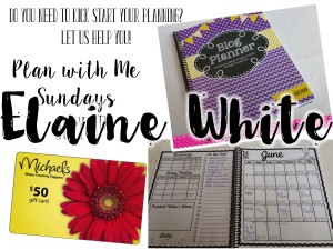 Plan with Me Sundays - Giveaway winners
