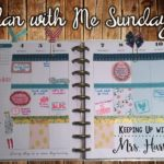 Plan with Me Sundays – New Year, New Organization