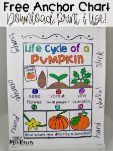 pumpkin anchor chart - fall anchor chart - fall freebies - free fall activities - fall lessons - fall activities for the classroom
