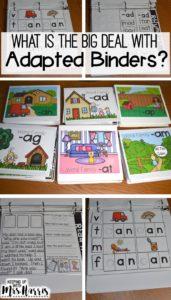 Phonics Adapted Binders - phonics, word families, word family activities, word family lessons
