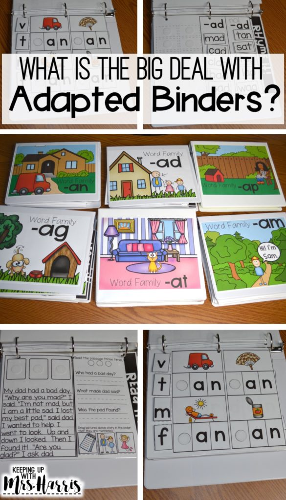 Phonics Adapted Binders - phonics, word families, word family activities, word family lessons